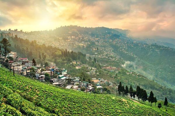 Que voir et que faire à Darjeeling ?